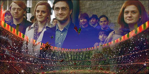 [BREAKING] Harry Potter alla Coppa del Mondo, nuovi racconti da J.K. Rowling